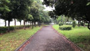暁ふ頭公園