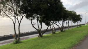 若洲海浜公園