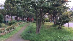 大島七丁目公園