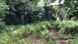 釜屋堀公園