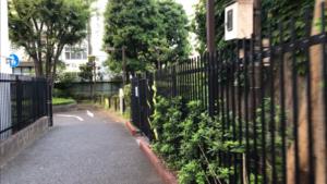 洲崎川緑道公園