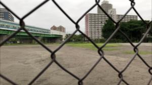 大島・小松川公園(少年運動場)