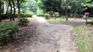 青海緑道公園