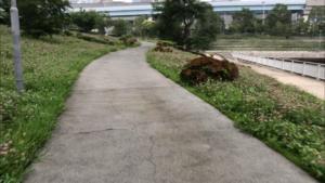 水の広場公園(西地区)