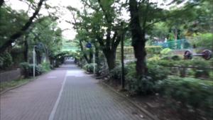 南砂緑道公園