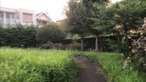 南砂三丁目緑地公園